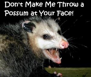 possum1 (640x543)